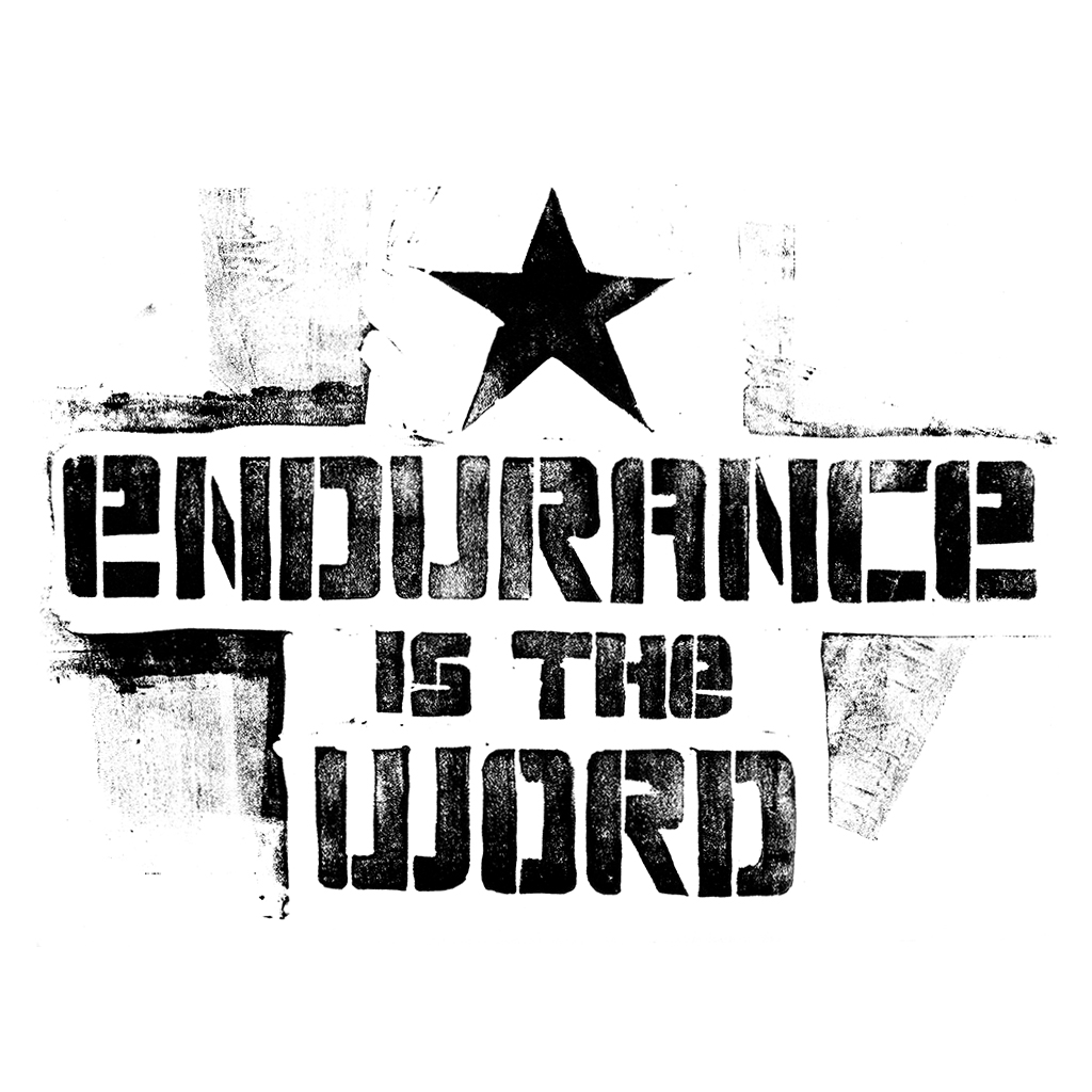 Endurance is the word